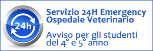 Servizio 24H Emergency