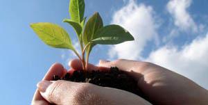 Arrivano ad Agraria 40 ricercatori da tutta l'Europa per discutere di sviluppo sostenibile
