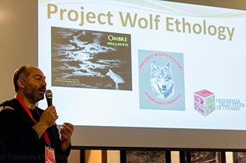 Andrea Gallizia - Project Wolf Ethology