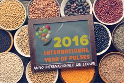 2016 Anno internazionale dei legumi