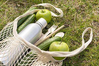 Scienze e culture gastronomiche per la sostenibilità