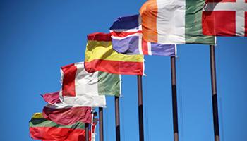 Studi politici e internazionali
