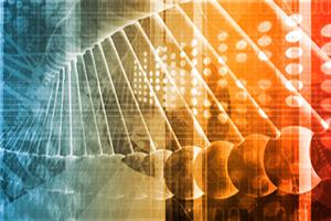 Biotecnologie Cellulari e Molecolari